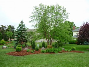 Waukesha Landscaping After Dan's Tree Service