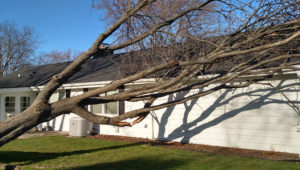 Day after thunder storms with wind gusts up to 60mph.
