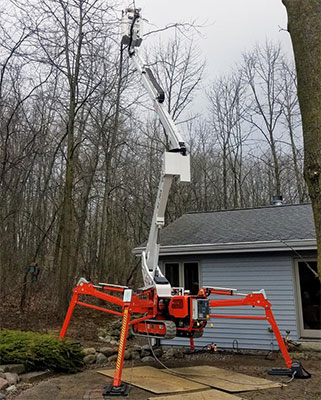 Spider Lift for Tree Removal
